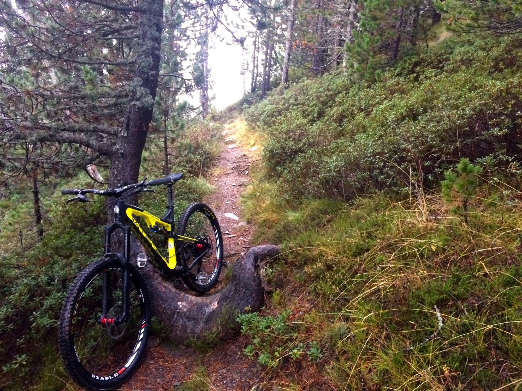 Test: Bicicleta de enduro/all mountain Intense Carbine 27,5 - 2015 ...